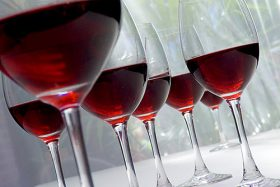 5% korting op Wijncursus